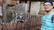 Hayvanat Bahçesinde Eşeği boyayıp zebra diye sergilemişler