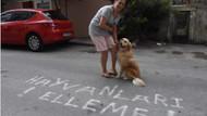 İzmir'de komşular arasındaki kedi kavgası Emniyet'e taşındı