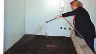 Evinde solucan dışkısıyla organik gübre üretiyor, taleplere yetişemiyor