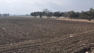 Tarım Bakanlığı'nın o değişikliği Danıştay tarafından engellendi