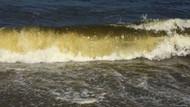 Denizin rengi sarardı kaymakamlık yüzmeyi yasakladı