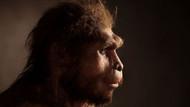 Homo Erectus neden yok oldu?