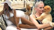 Cansu Taşkın köpeği Moi'ye Instagram hesabı açtı