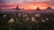 Dünya Meteoroloji Örgütü fotoğraf yarışmasının kazananlarını açıkladı