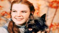 Oz Büyücüsü'ndeki Dorothy'nin kırmızı ayakkabıları çalındıktan 13 yıl sonra bulundu