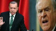 Cumhur İttifakı için çarpıcı iddia: Güvercin Erdoğan'a karşılık Şahin Bahçeli