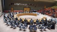ABD ve Rusya, Türkiye'nin kınanmasını veto etti