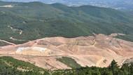Kaz Dağları'nda binlerce ağaç kesen maden şirketinin faaliyeti durduruldu