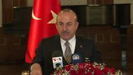 Mevlüt Çavuşoğlu'dan skandal haritaya ilişkin açıklama