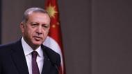 Erdoğan MHP'nin 50. yılını kutladı: Türkeş mesajı