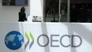 OECD'den Türkiye'ye rüşvetle mücadele uyarısı: Ekim ayına kadar mühlet