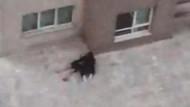 23 yaşındaki genç kadın 4. kattan atladı: Ne olur ölme Fatma...