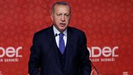 Erdoğan: İmam hatiplere saldıranlar milletimizin köklerini kurutmak istiyor