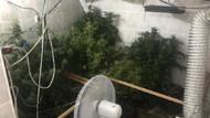 Evi uyuşturucu imalathanesine çevirmişler