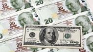 Dolarda her 1 kuruşluk artış, 2 milyar TL kur zararı yaratıyor