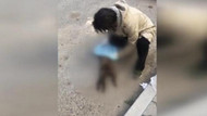 Anne kedi ile 3 yavrusu bıçaklanarak öldürülmüş halde bulundu
