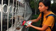 Adana'da sokak kedilerini besleyen hayvansever kadın darp edildi!
