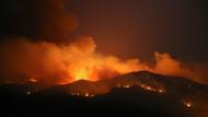 Muğla'da ormanlar rant için mi yakılıyor?