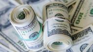 Merkez Bankası dolar ve enflasyon beklentisi değişti