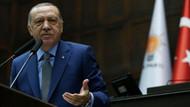 Selvi: Erdoğan kurulacak partileri iki noktadan hedef alacak