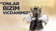 Zeydan Karalar'dan hamile kedi Çıtır açıklaması