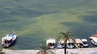 Fethiye Körfezi'ndeki renk değişiminin nedeni atık su tesisi
