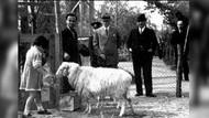 Murat Bardakçı: Atatürk 1931'de gönderilen bayram tebriklerine cevap vermeyeceğini bildirdi