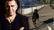 Haluk Levent: Kesimden kaçanları biz alıyoruz