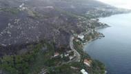 Marmara Adası'ndaki orman yangınının bilançosu belli oldu