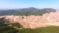 Kaz Dağları'ndaki altının yüzde 5'i bile devlete kalmayacak