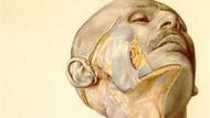 Nazilerin öldürdüğü kişiler üzerinde yapılan çalışmalar sonrası yazılan tartışmalı anatomi kitabı