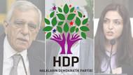 HDP'nin kayyumlara karşı 3 adımlı yol haritası belli oldu