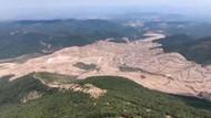 TEMA Altın madeni için kesilen ağaç sayısını açıkladı