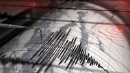 Ege'de 8 saat içinde 114 deprem!