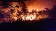Muğla Ortaca'da orman yangını