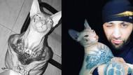 Dövmeli kedi hapishaneden kaçtı