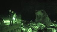 Bunu da gördük... Ayılarla selfie!