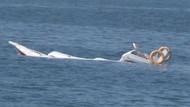 İzmir'de tekne battı: 1 kişi kayıp!