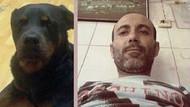 Aç kalan köpek intihar eden adamı yedi!