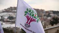 YSK, HDP'nin adayını veto etti