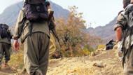 PKK, Ak Parti İlçe Başkanını kaçırdı