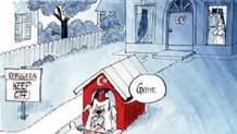 Avusturya'dan küstah Türkiye karikatürü!