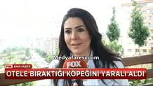 Müge Emeç'in köpeği için mücadelesi