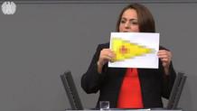 Almanya'da rezalet! Türk vekil mecliste YPG paçavrası açtı