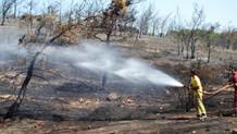 Ayvalık'ta aynı bölgede iki gün sonra yine yangın çıktı