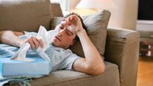 Gergedan virüsü gribe değil, soğuk algınlığına neden oluyor