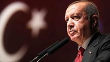 Erdoğan: Milletin parasını dağa göderenlere seyirci kalmayacağız