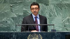 Arap ülkesi, Rus uçağının düşürülmesini kınadı