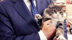 CHP'nin kedisi Şero'dan CHP'ye şok eleştiri