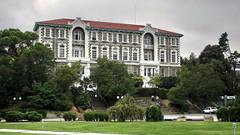İstanbul'da akademisyenlere operasyon! Çok sayıda gözaltı var